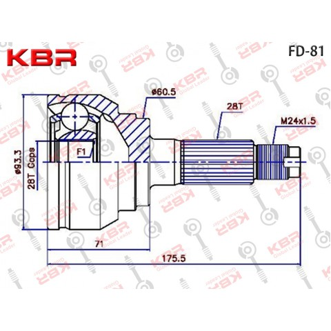 FD81   -   OUTBOARD C V JOINT