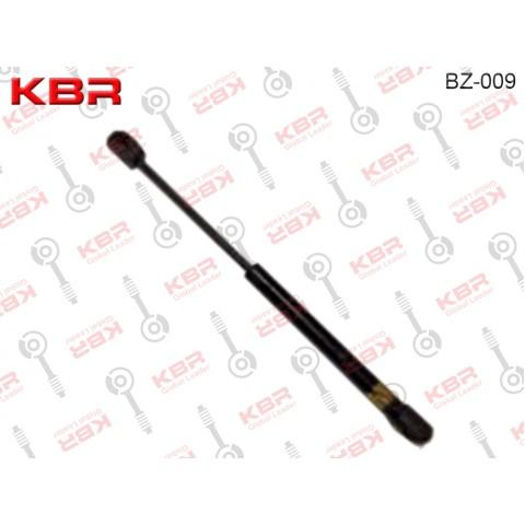 BZ009   -   GAS SPRING
