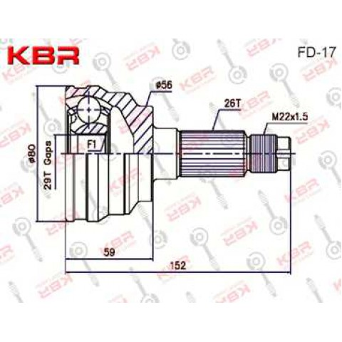 FD17   -   OUTBOARD C V JOINT