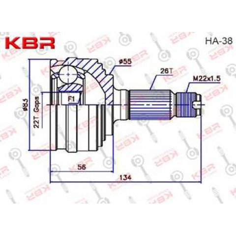 HA38   -   OUTBOARD C V JOINT
