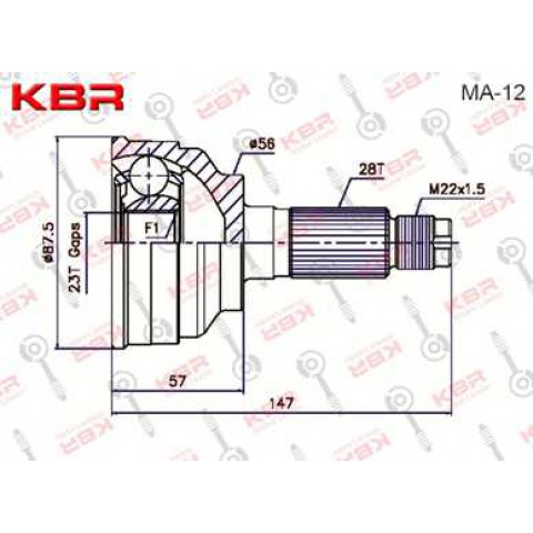 MA12   -   OUTBOARD C V JOINT