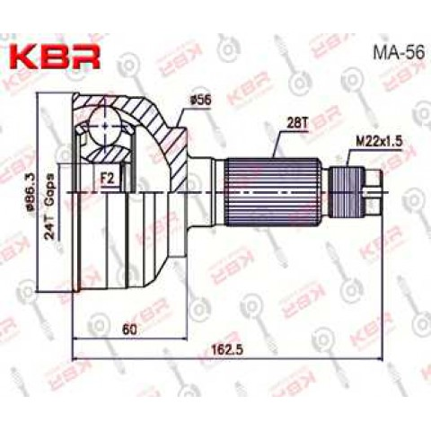 MA56   -   OUTBOARD C V JOINT