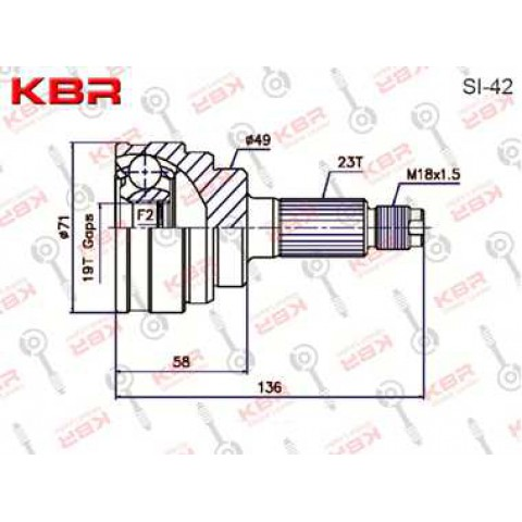 SI42   -   OUTBOARD C V JOINT