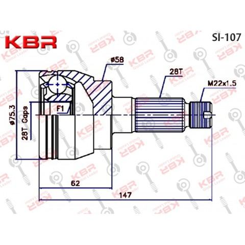 SI107   -   OUTBOARD C V JOINT